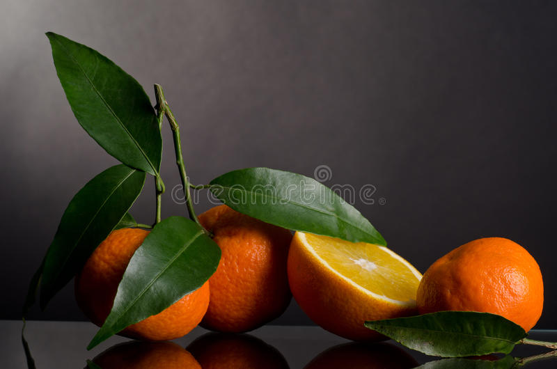 Tangerines On A Branch Royalty Free Stock Images