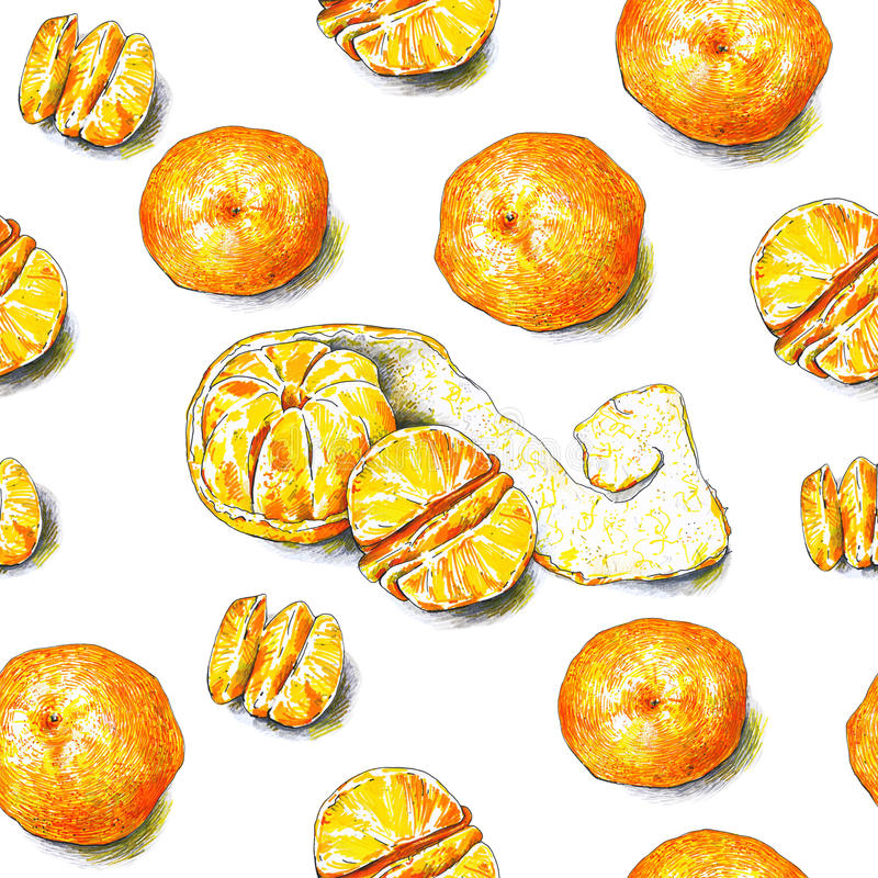 Free Tangerines Fruits Are On A White Background. Color Sketch Felt-tip Pens. Tropical Fruit. Handwork. Seamless Pattern Stock Image - 85597981
