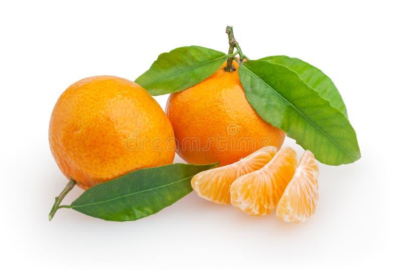 Tangerines odizolowywający na bielu zdjęcie royalty free