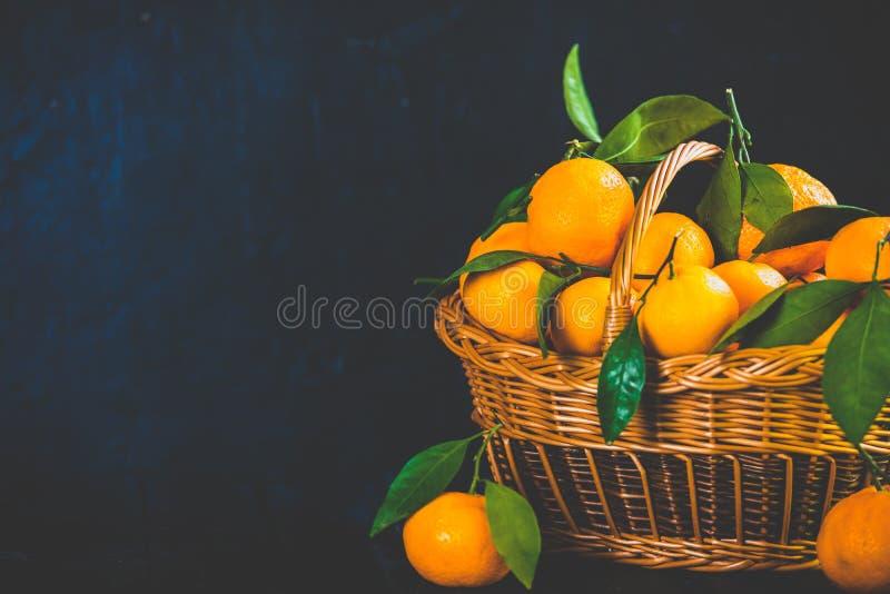 Tangerines, pomarańcze, mandarynki, clementines, cytrus owoc z liśćmi w koszu nad nieociosanym drewnianym ciemnym tłem, kopiują p obrazy stock