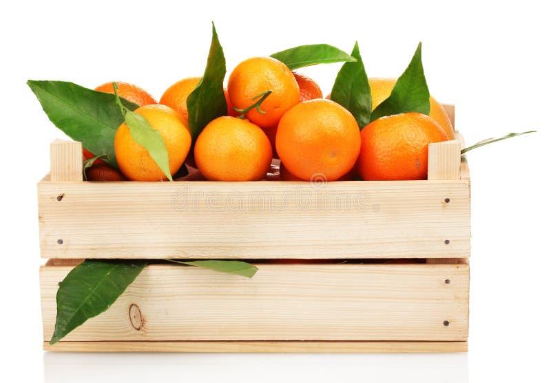 Tangerines saborosos maduros com as folhas na caixa de madeira fotos de stock royalty free
