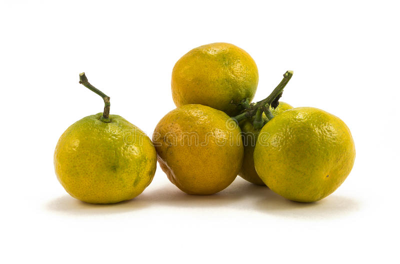 Tangerines on a white background stock images