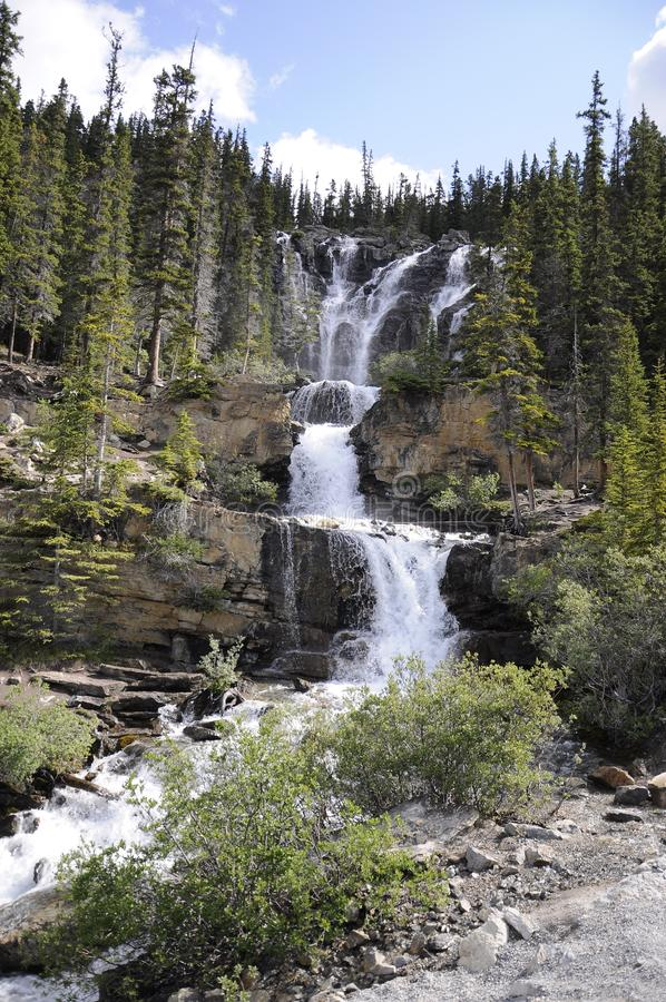Tangle Creek Cai no Parque Nacional de Jasper fotografia de stock royalty free