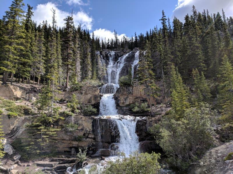 Tangle Creek Cai no Parque Nacional de Jasper fotos de stock