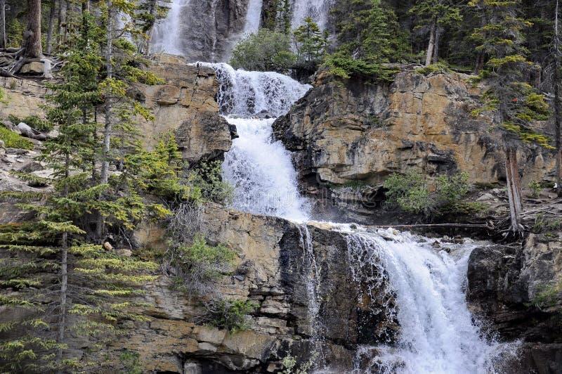 Tangle Creek Cai no Parque Nacional de Jasper imagens de stock royalty free