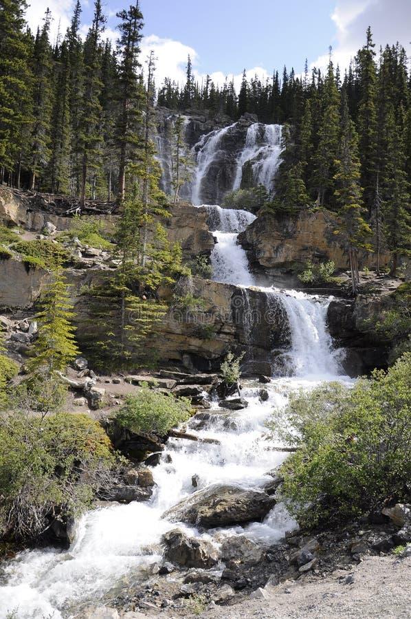 Tangle Creek Cai no Parque Nacional de Jasper fotos de stock royalty free