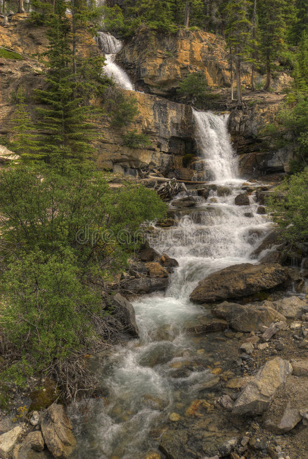 Download Tangle Falls stock photo. Image of wilderness, trees - 20616036