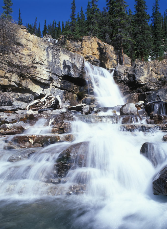 Tangle Falls stock image
