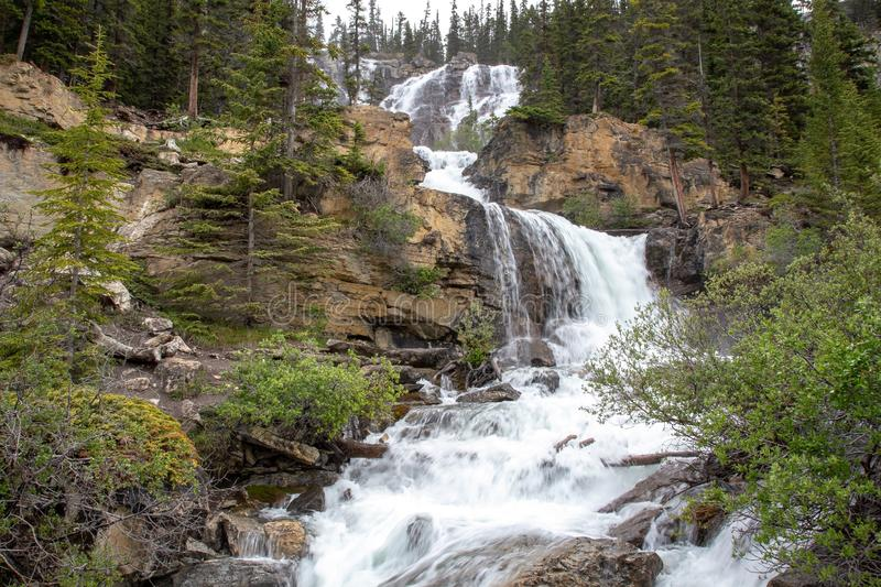Tangle Falls, Icefields Parkway, Jasper National Park, Canadá foto de stock