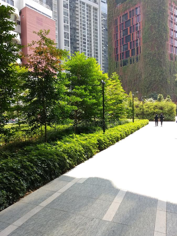 Tanjong Pagar park w Singapur obraz royalty free