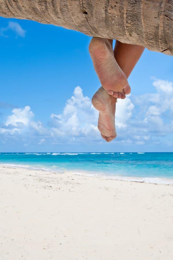 Tanned europen os pés das mulheres em uma palma imagens de stock
