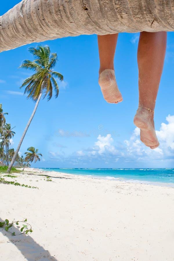 Tanned europen os pés das mulheres em uma palma fotografia de stock royalty free