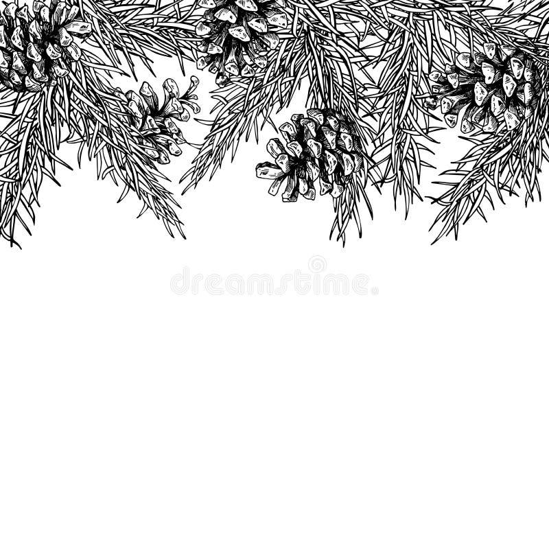 Tannenbaum und Kiefernkegel übergeben gezogenen Vektorquadratrahmen für Winter vektor abbildung