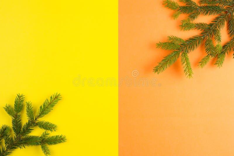 Tannenbaumast auf gelbem und orange Hintergrund Draufsicht, flache Lage Weihnachtszusammensetzung stockbild