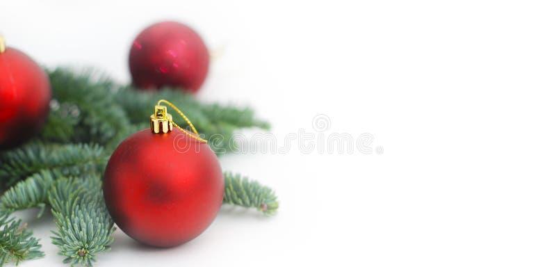 Tannenzweige mit Weihnachtsroten Baum-Bällen mit Kopien-Paste Baner lizenzfreie stockbilder
