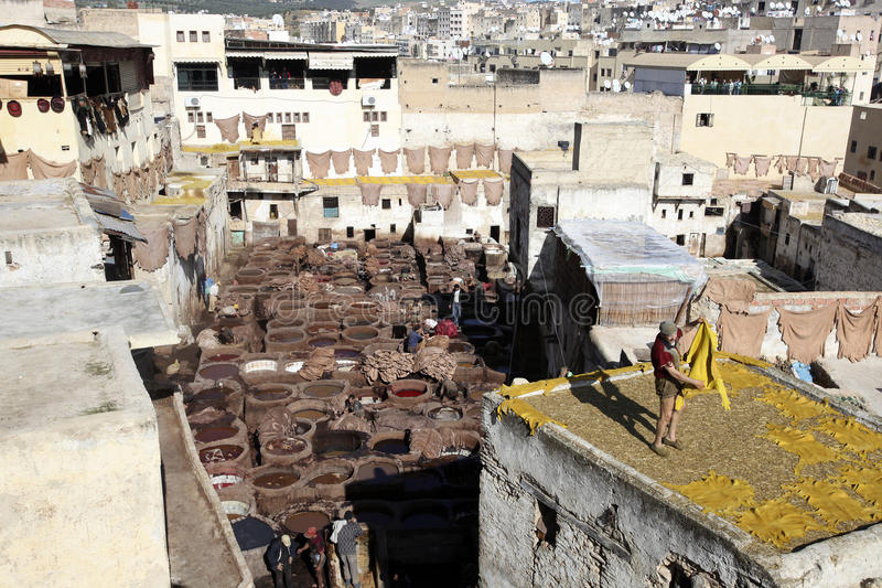 Tannery of Fez, Morocco stock image