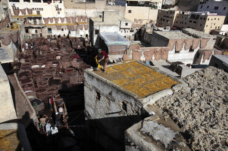 Tannery of Fez, Morocco royalty free stock image