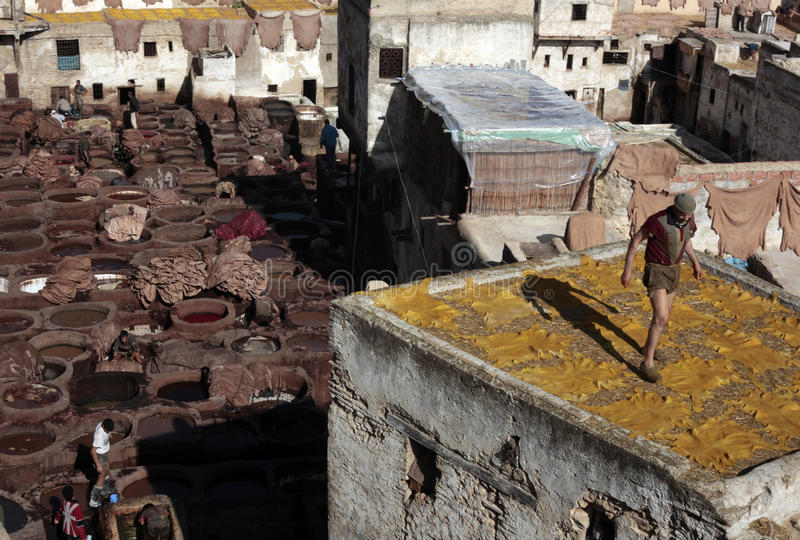Tannery of Fez, Morocco royalty free stock images