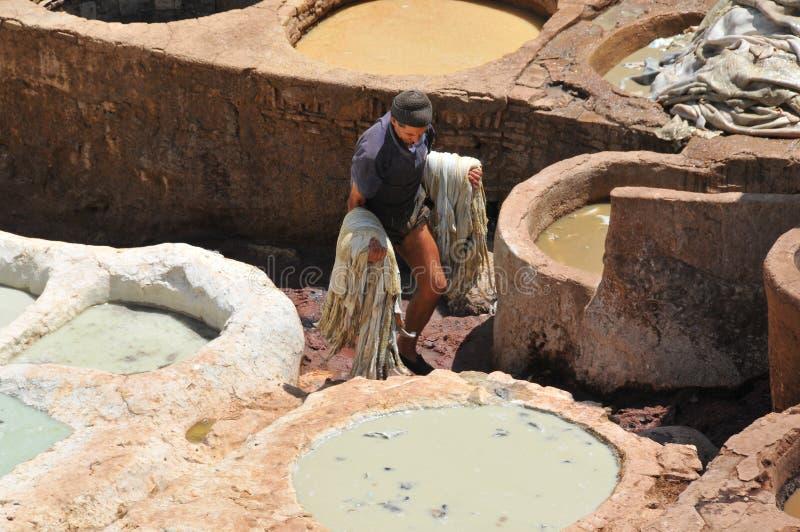 Tanning de couro em Fez, Marrocos imagem de stock