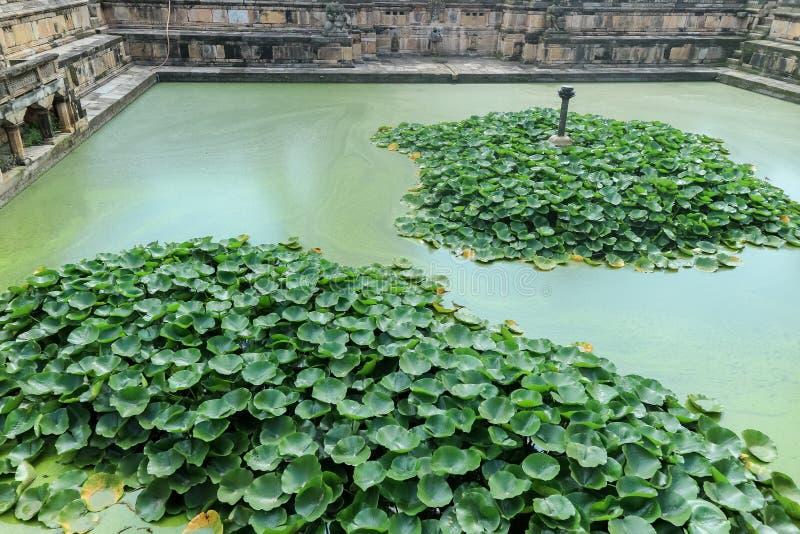 Tanque de água de Bhandarkhal, uma vez a fonte principal da água para o palácio, e templo de Taleju, quadrado de Patan Durbar, Ne imagem de stock
