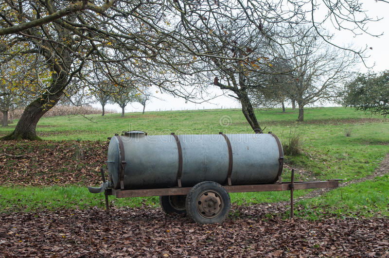 Tanque molhando do gado tradicional fotografia de stock