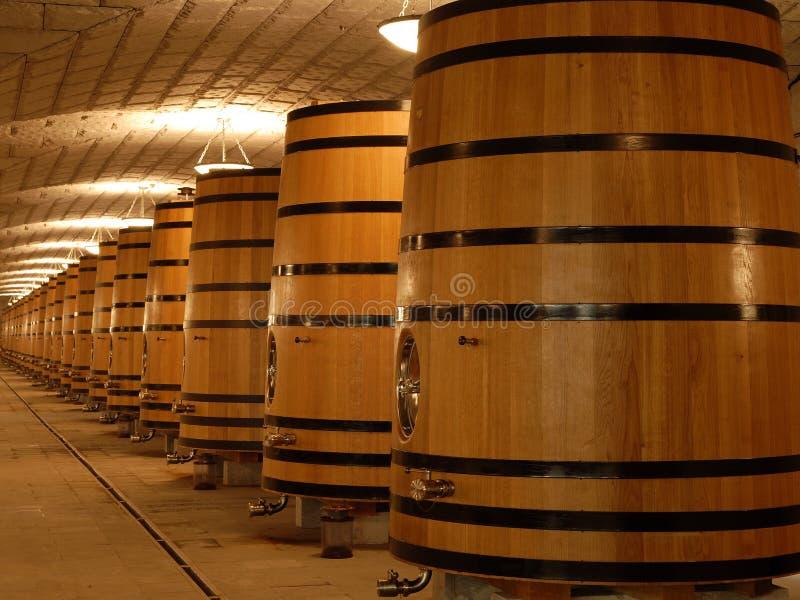 Tanques/cubas do carvalho para o vinho fotografia de stock royalty free