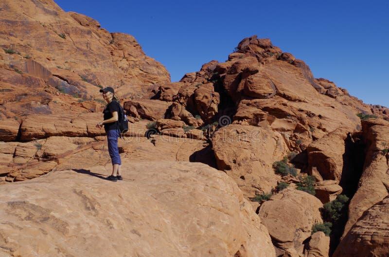 Tanques da chita, área vermelha da conservação da rocha, Nevada do sul, EUA fotografia de stock royalty free