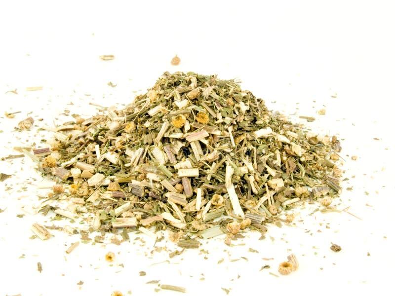 Tansy, hierba secada imagen de archivo