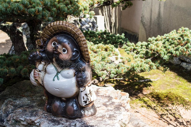 Tanuki. Standing in the garden royalty free stock photography
