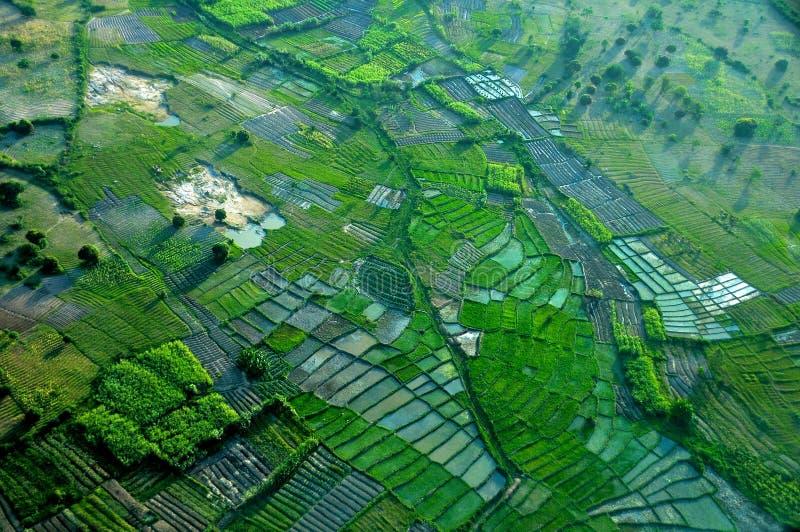 Tanzânia aérea imagem de stock