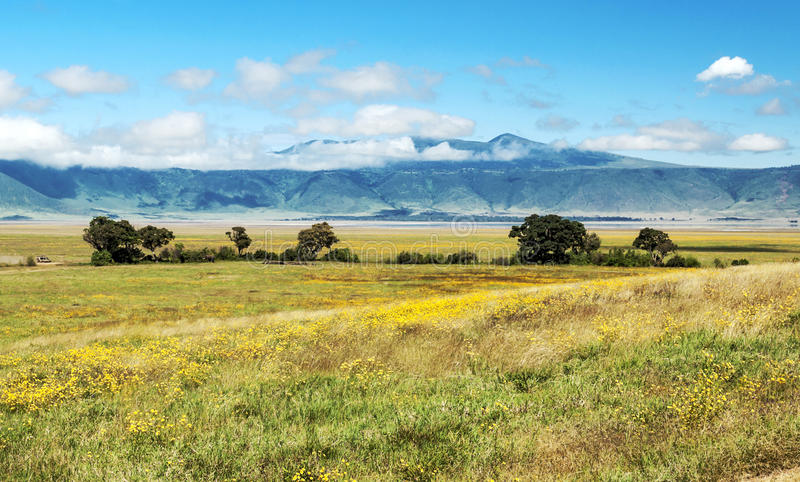 Tanzania meadows. With mountains in the background on a cloudy day royalty free stock image