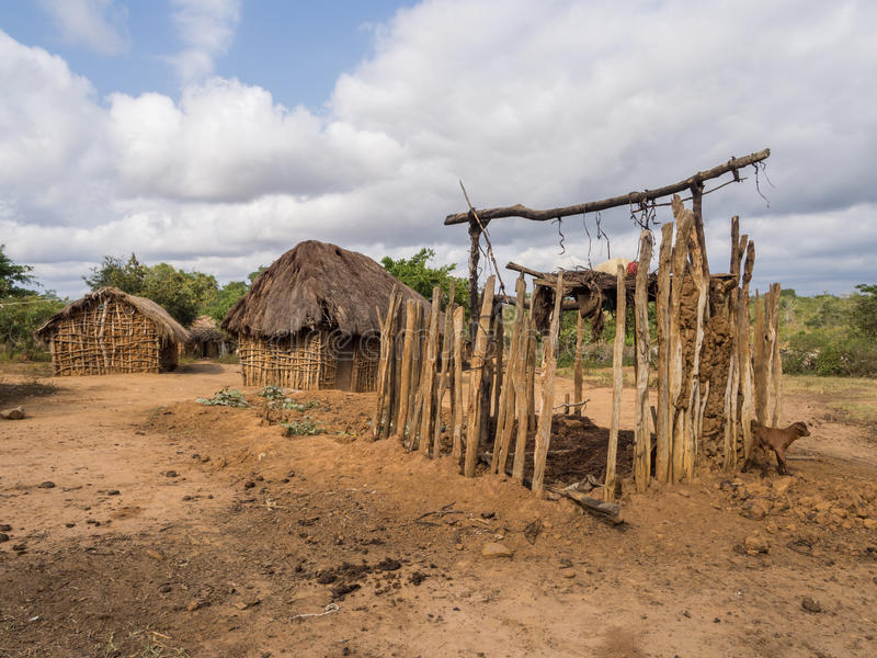 Tanzanian village. Typical Tanzanian small village with simple houses. Goat croft in the foreground royalty free stock images