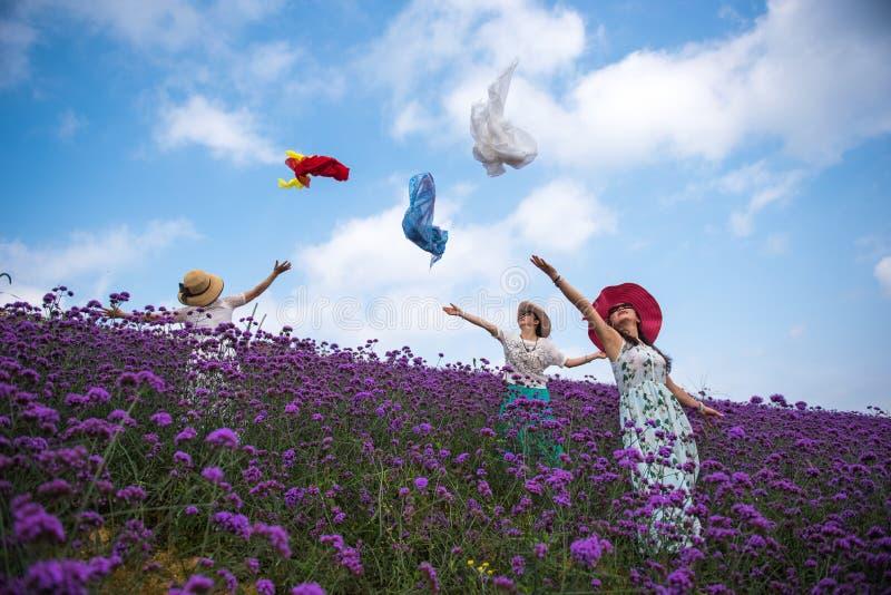 Tanzen-Frauen im Lavendel-Freizeitpark stockbild