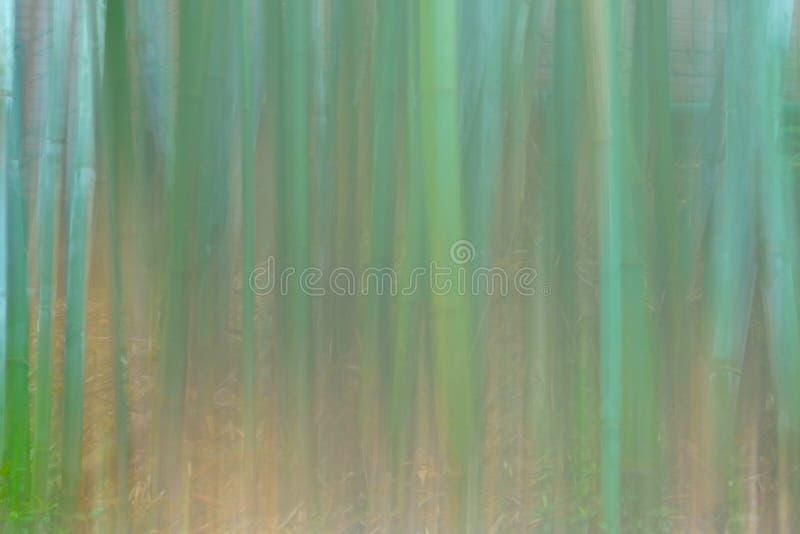 Tanzende Damen im Wald von Populus euphratica in der Wüste lizenzfreie stockfotografie
