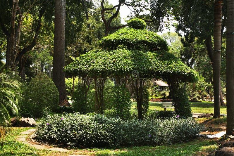 Tao Dan Park em Ho Chi Minh vietnam fotografia de stock