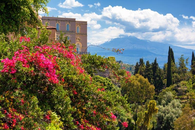 Taormina: flores e o Etna imagem de stock