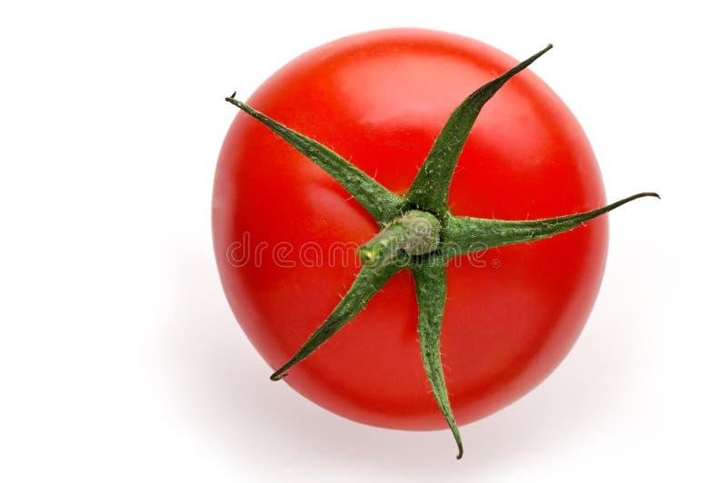 Tapa aislada del tomate imagenes de archivo