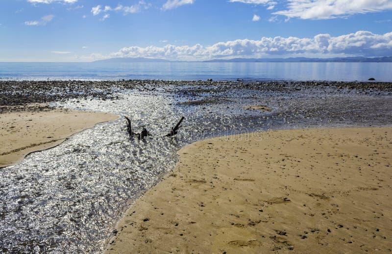 Tapapakanga plaży regionalności park Auckland Nowa Zelandia obrazy royalty free