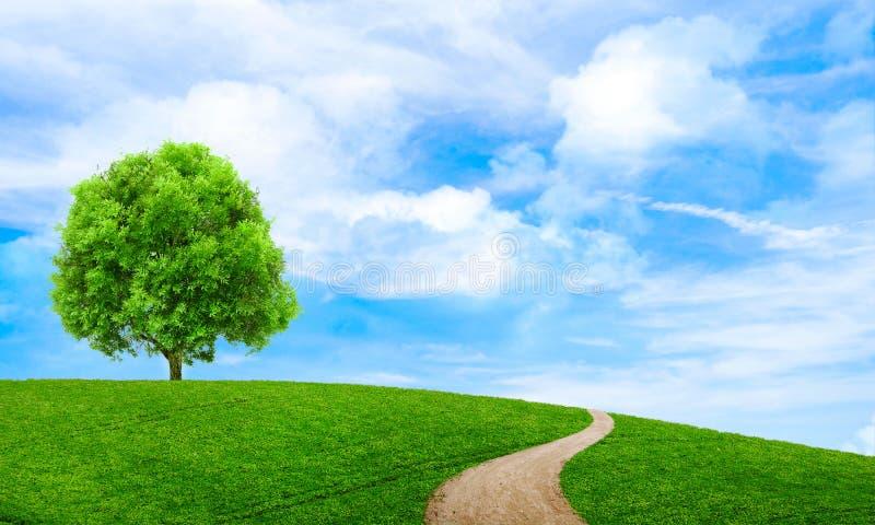 Tapet för sikt för grönt sommarlandskap scenisk härlig wallpaper arkivfoton