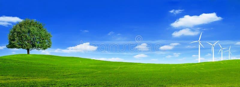 Tapet för sikt för grönt sommarlandskap scenisk härlig wallpaper Ensligt träd på den gräs- kullen och blå himmel med moln fotografering för bildbyråer