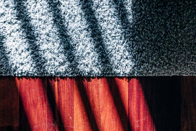 Tapete cinzento do luxuoso no assoalho de madeira com sombras da luz solar foto de stock royalty free