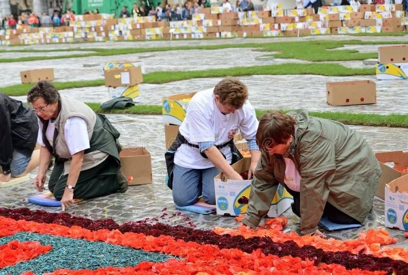 Tapete da flor em Grand Place durante a chuva fotografia de stock royalty free