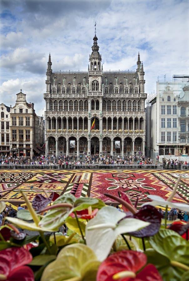 Tapete da flor na frente do rei House ou Het Broodhuis em Grand Place de Bruxelas imagem de stock royalty free