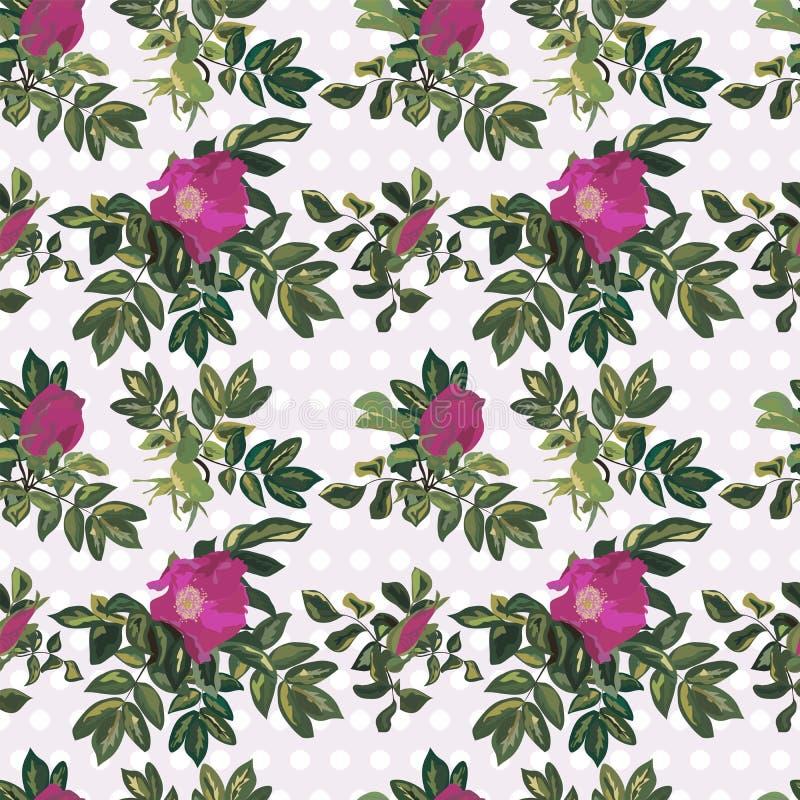Tapetowy rocznik róży wzór ilustracja wektor