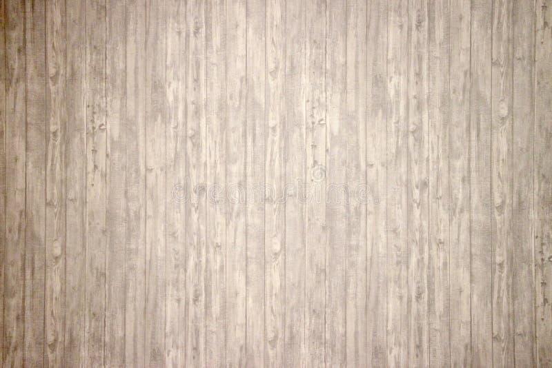 Tapetowy tło pod białym drzewem zdjęcie stock