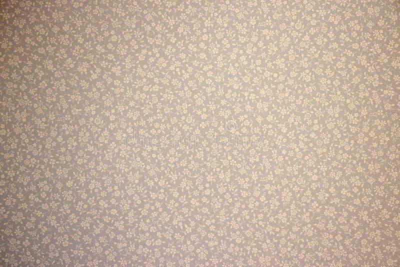 Tapetowy tło w małym białego kwiatu ornamencie na szarym błękitnym tle zdjęcia royalty free