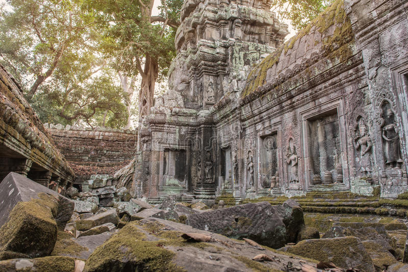 Taphom slott- eller Prasat Ta Prohm tempel på Angkor i Siem Reap C royaltyfria bilder