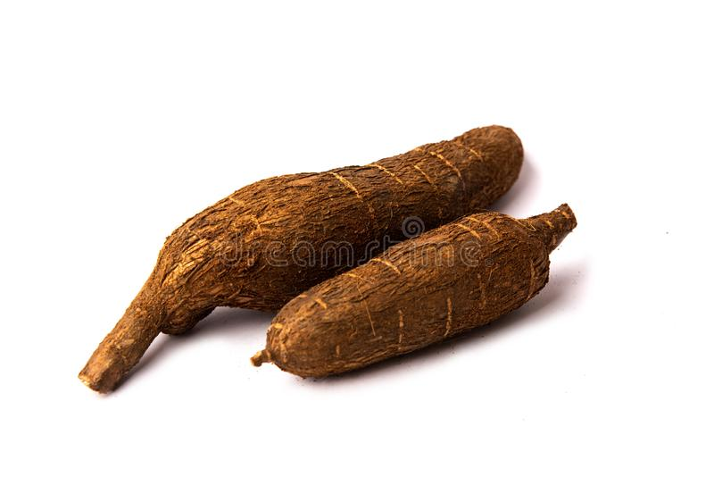 Tapioca root on white background isolated. Healthy food stock image
