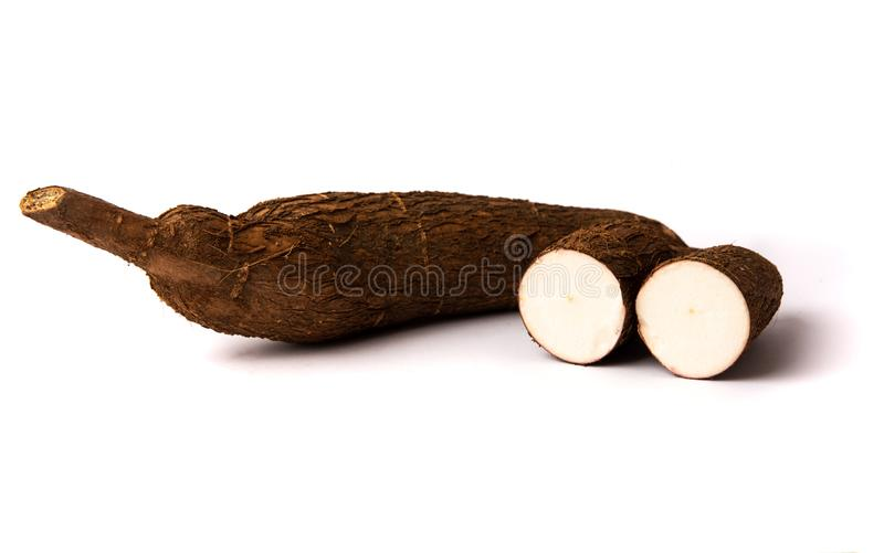 Tapioca root on white background isolated. Healthy food royalty free stock photo