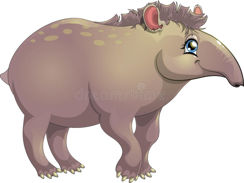 Tapir. The picture with a tapir without a background vector illustration